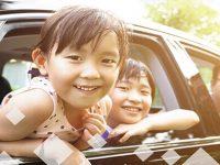 Bảo hiểm tự nguyện lái phụ xe và người ngồi trên xe